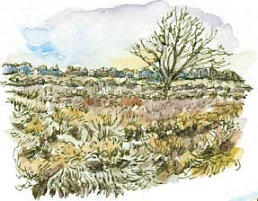 Seckar Heath