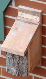The nestbox as it was when new. It needs a clear out inside but I didn't get around to doing that during the winter.