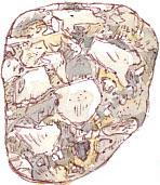 breccia pebble