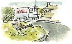 moorhen in Midgley