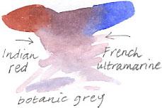 botanic grey
