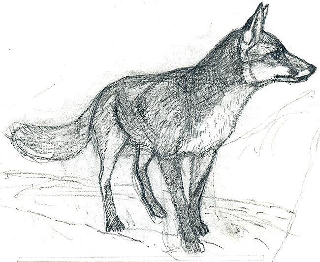 fox 1987