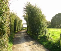ardsley lane