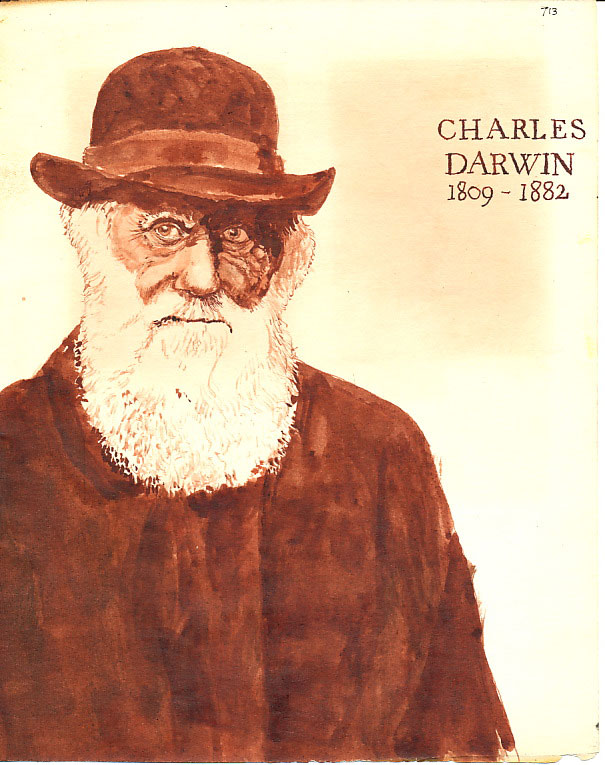 Charles Darwin, drawn for a student project in 1975 on the graphic design course at Leeds College of Art.