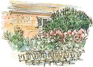 front garden, South Ossett