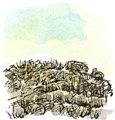 Oliver's Mount