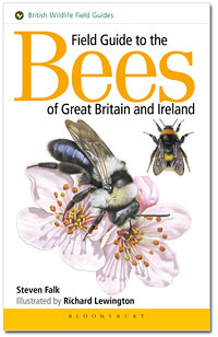 bee field guide