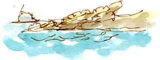 Bass Rock from the catamaran