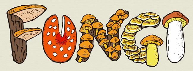 Fungi hand lettering