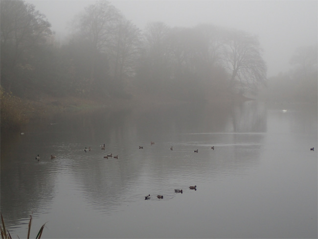 Nostell Middle Lake
