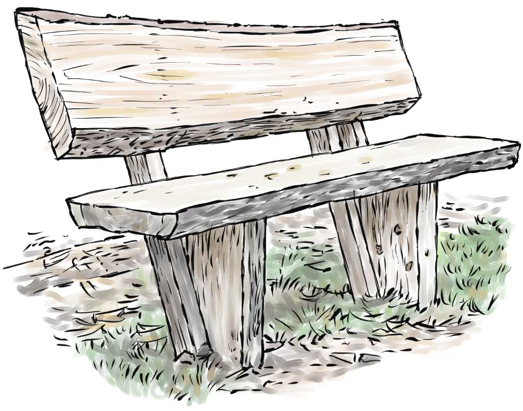 Larch bench
